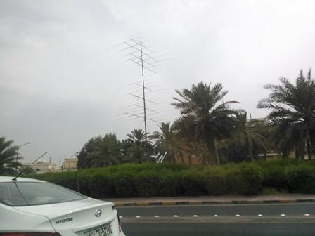 kuwait_ant